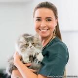 centro veterinário cães e gatos localizar Vila Reis