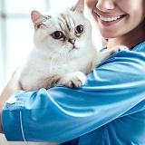 centro veterinário para gatos Jardim Lajeado