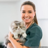 centros veterinários felino Zona Leste