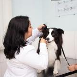 clínica de veterinária Vila Santa Inês