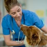 localização de clínica veterinária para cachorro Vila Jacuí