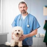 onde encontrar clínica veterinária 24 horas Jardim Lapena