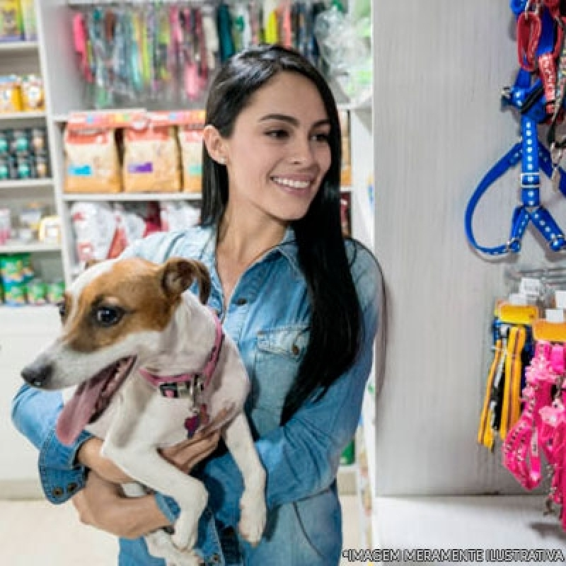 Pet Shop de Animais Local Parque Cruzeiro do Sul - Pet Shop para Cachorro