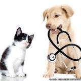 centro hospitalar veterinário localizar Ponte Rasa