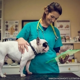 centro veterinário oncologia localizar Vila Ré