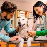 centro veterinário para cachorro Jardim São Vicente