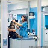 clínica veterinária e pet shop localização Vila Santa Inês