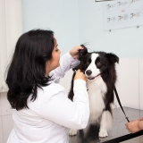 clínica veterinária localização Zona Leste