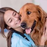 localização de clínica veterinária 24 hrs Parque Sonia