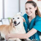 localização de clínica veterinária e pet shop Vila Americana