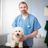 onde encontrar clínica veterinária 24 horas Jd da Conquista