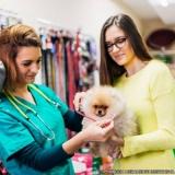 pet shop de cachorros filhotes Itaquera