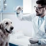 procuro por exames laboratoriais veterinários Vila Carolina