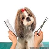quanto custa banho e tosa em cães Vila Ré